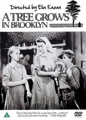 Rent A Tree Grows in Brooklyn Online DVD & Blu-ray Rental