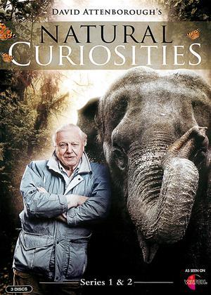 Rent Natural Curiosities: Series 1 and 2 (aka David Attenborough: Natural Curiosities: Series 1 and 2) Online DVD Rental