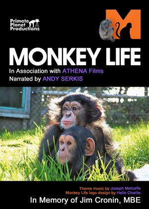 Rent Monkey Life Online DVD & Blu-ray Rental
