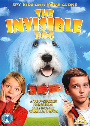 Rent The Invisible Dog Online DVD Rental