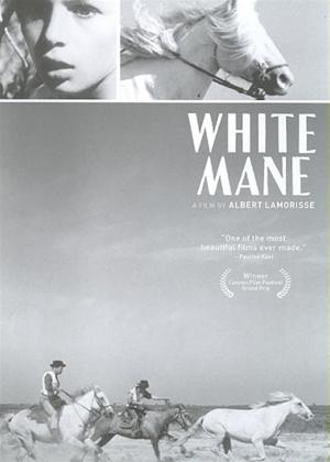 Rent White Mane (aka Crin blanc: Le cheval sauvage) Online DVD Rental