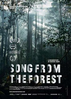 Rent Song from the Forest Online DVD Rental