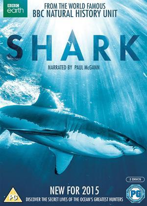 Rent Shark Online DVD Rental