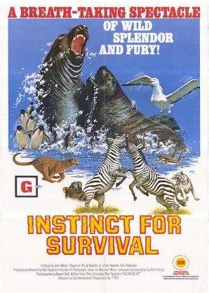 Rent Ape and Super-Ape (aka Bij de beesten af) Online DVD & Blu-ray Rental