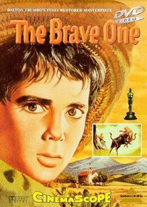 Rent The Brave One Online DVD Rental
