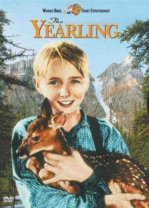 Rent The Yearling Online DVD Rental