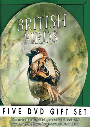 Rent British Birds Online DVD Rental