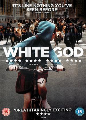 White God Online DVD Rental