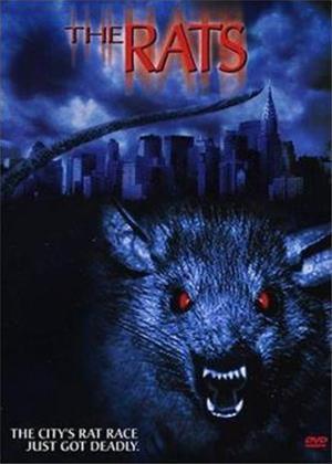 Rent The Rats Online DVD Rental