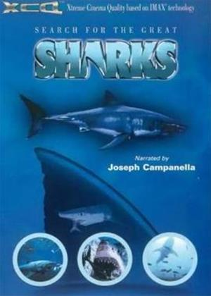 Rent Search for the Great Sharks Online DVD Rental