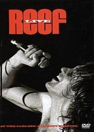 Rent Reef: Live Online DVD Rental