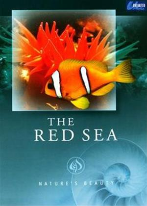 Rent Nature's Beauty: The Red Sea Online DVD Rental