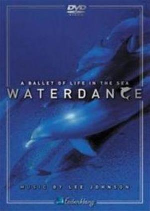 Rent Lee Johnson: Waterdance Online DVD Rental