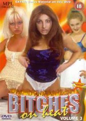 Rent Bitches on Heat: Vol.3 Online DVD Rental