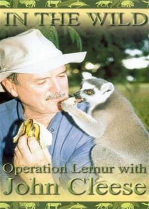 Rent In the Wild: Operation Lemur Online DVD & Blu-ray Rental