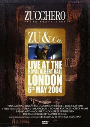 Rent Zucchero: Live at the Royal Albert Hall Online DVD Rental