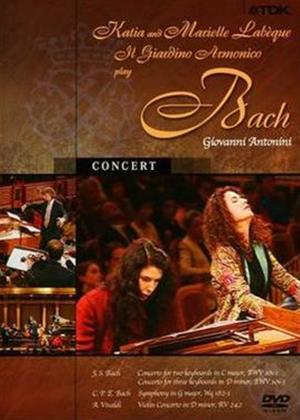 Rent The Italian Bach in Vienna Online DVD Rental