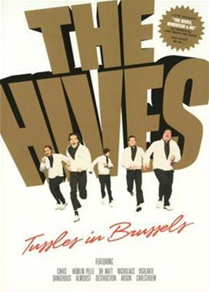 Rent The Hives: Tussels in Brussels Online DVD Rental