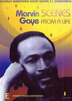 Rent Marvin Gaye: Scenes from a Life Online DVD Rental