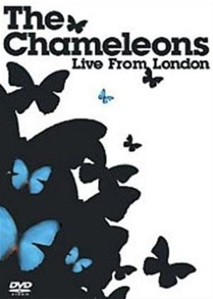 Rent The Chameleons: Live from London Online DVD Rental