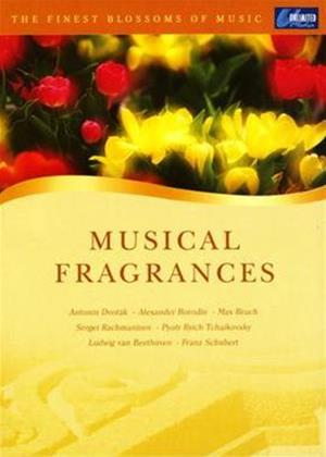 Rent The Finest Blossoms of Music: Musical Fragrances Online DVD Rental