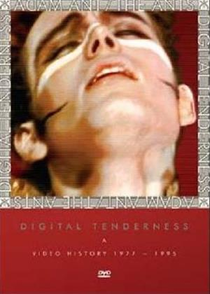 Rent Adam and the Ants: Digital Tenderness Online DVD Rental