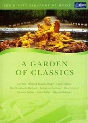 Rent The Finest Blossoms of Music: A Garden of Classics Online DVD Rental