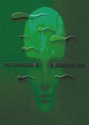 Rent The Chameleons: Ascension Online DVD Rental