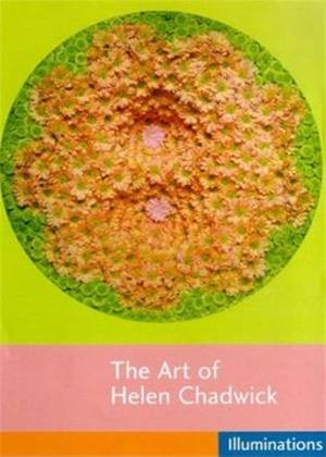 Rent The Art of Helen Chadwick Online DVD Rental