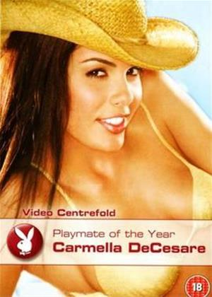 Rent Playboy: Playmate of the Year 2004 Online DVD Rental