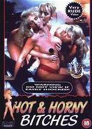Rent Hot and Horny Bitches Online DVD Rental