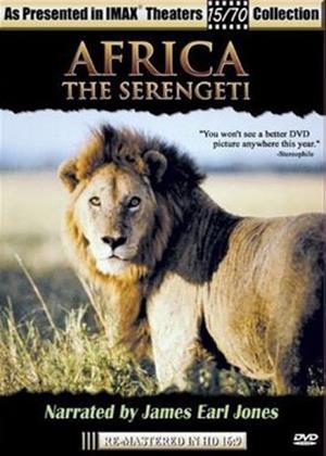 Rent Africa the Sergenti Online DVD Rental