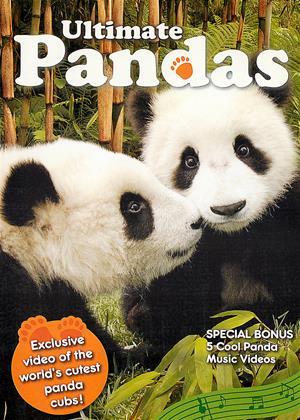 Rent Ultimate Pandas Online DVD Rental