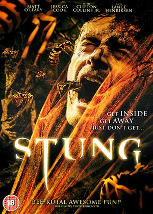 Rent Stung Online DVD & Blu-ray Rental
