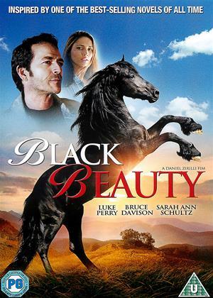 Rent Black Beauty Online DVD Rental