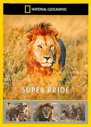 Rent National Geographic: Super Pride Online DVD Rental