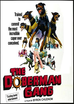 Rent The Doberman Gang Online DVD Rental