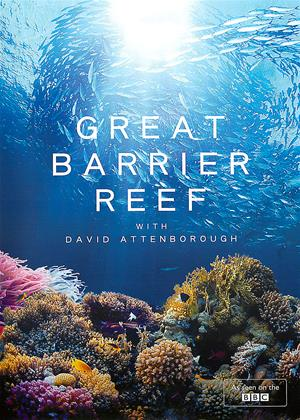 Rent Great Barrier Reef with David Attenborough Online DVD Rental