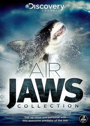Rent Air Jaws: Collection Online DVD Rental