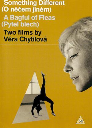 Rent Something Different / A Bagful of Fleas (aka O necem jinem / Pytel blech) Online DVD Rental
