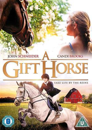 Rent A Gift Horse Online DVD Rental