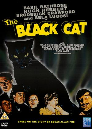 Rent The Black Cat Online DVD Rental