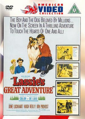Rent Lassie's Great Adventure Online DVD Rental