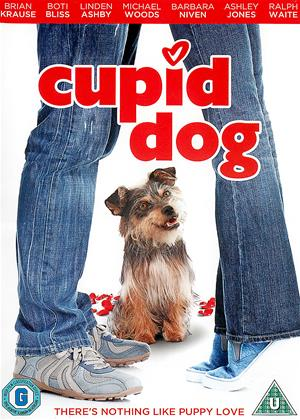 Rent Cupid Dog (aka Gabe the Cupid Dog) Online DVD Rental