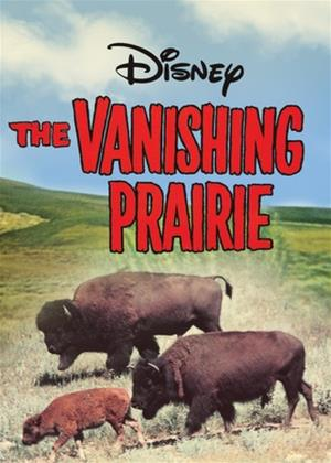 Rent The Vanishing Prairie Online DVD Rental