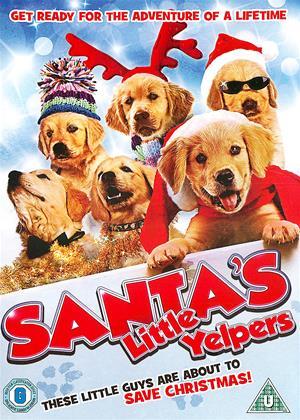 Rent Santa's Little Yelpers (aka Golden Winter) Online DVD Rental
