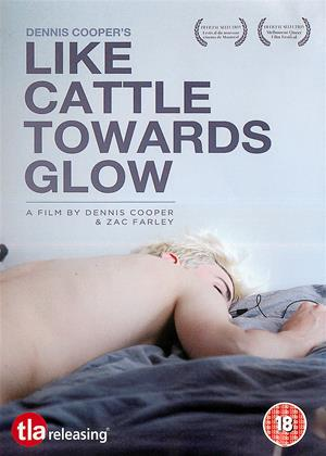 Rent Like Cattle Towards Glow Online DVD Rental