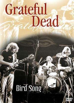 Rent Grateful Dead: Bird Song: In Concert Online DVD & Blu-ray Rental