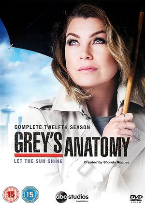 Rent Grey's Anatomy: Series 12 Online DVD Rental