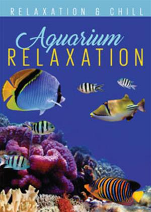 Rent Aquarium Relaxation Online DVD Rental